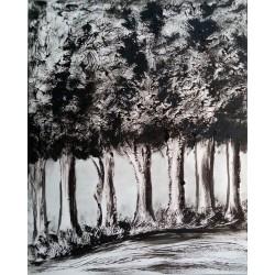Bosque en blanco y negro
